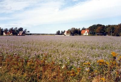Schweden, auf der Fahrt nach Trelleborg