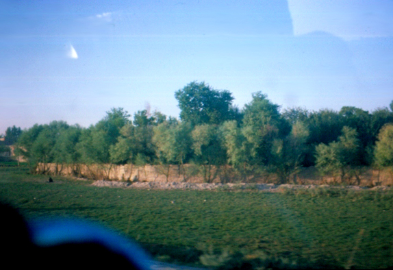 77059_afghan.jpg